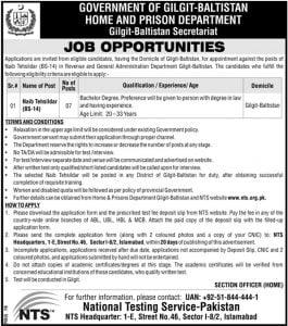 naib-tehsildar-nts-jobs