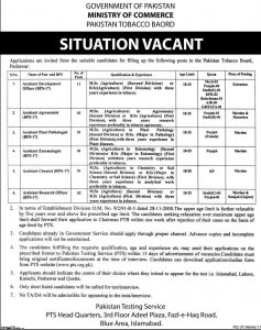 pts pakistan tbacoo board jobs